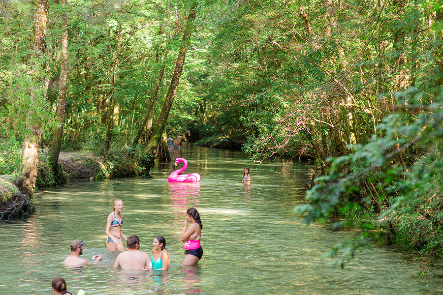 Panhandle-Ponce De Leon State Park Florida